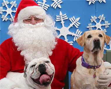"RMR's OEB ""Bo"", Santa and Trivia"