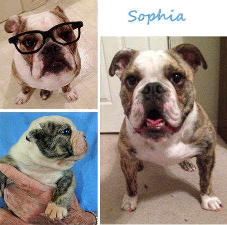 Sophia AKA Shoshone
